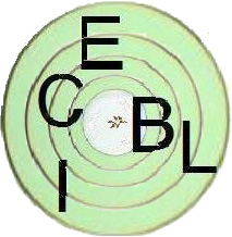 http://www.prise2tete.fr/upload/FRiZMOUT-gwen-cible.jpg