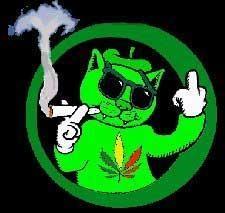 http://www.prise2tete.fr/upload/Flying_pyros-4-chagrin.jpg