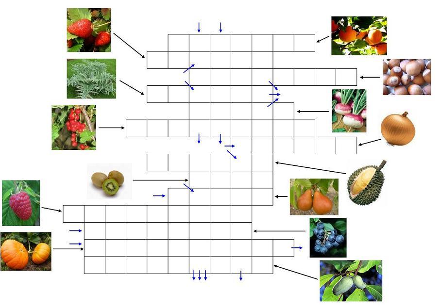 http://www.prise2tete.fr/upload/Flying_pyros-Fruits-legumes.JPG