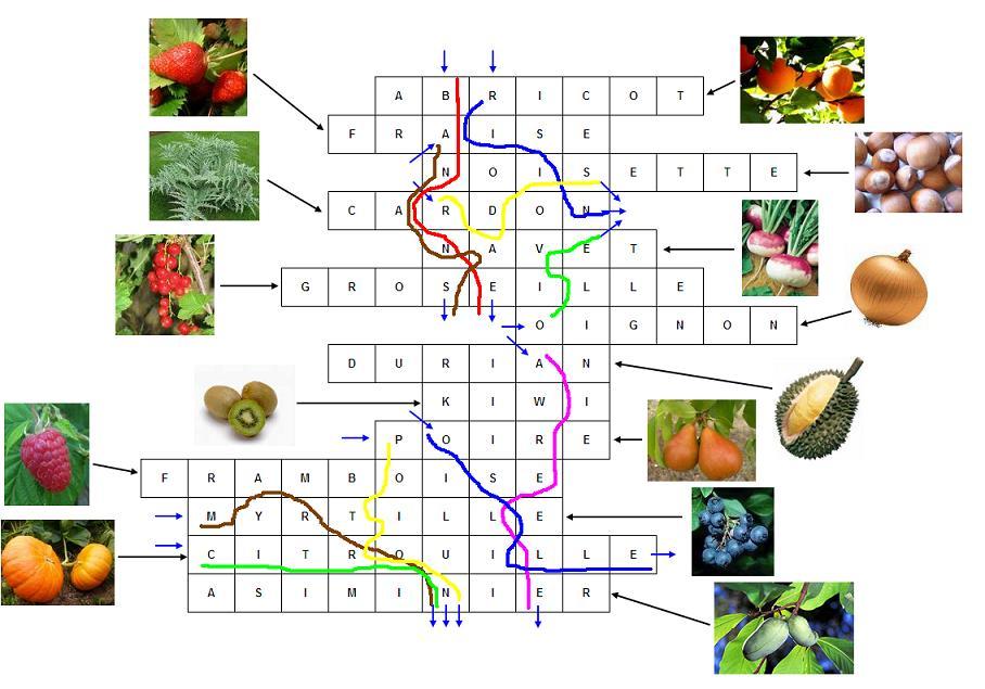 Fruit Commencant Par V. Great Concombre With Fruit Commencant Par V ...