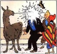 http://www.prise2tete.fr/upload/Klimrod-79-4.jpg
