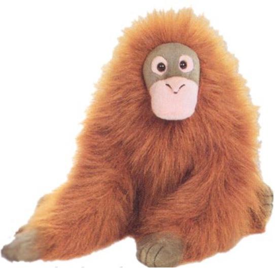http://www.prise2tete.fr/upload/MacArony-Orang-outan.jpg
