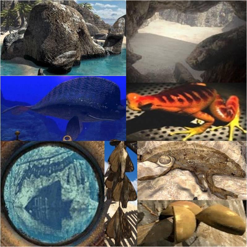 http://www.prise2tete.fr/upload/Moriss-4animaux.jpg
