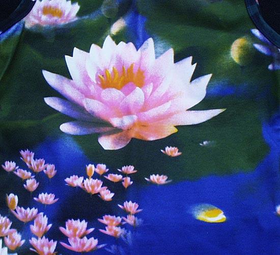 http://www.prise2tete.fr/upload/MthS-MlndN-fleur.jpg