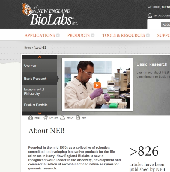 http://www.prise2tete.fr/upload/NickoGecko-Nobodydy122NEB.jpg