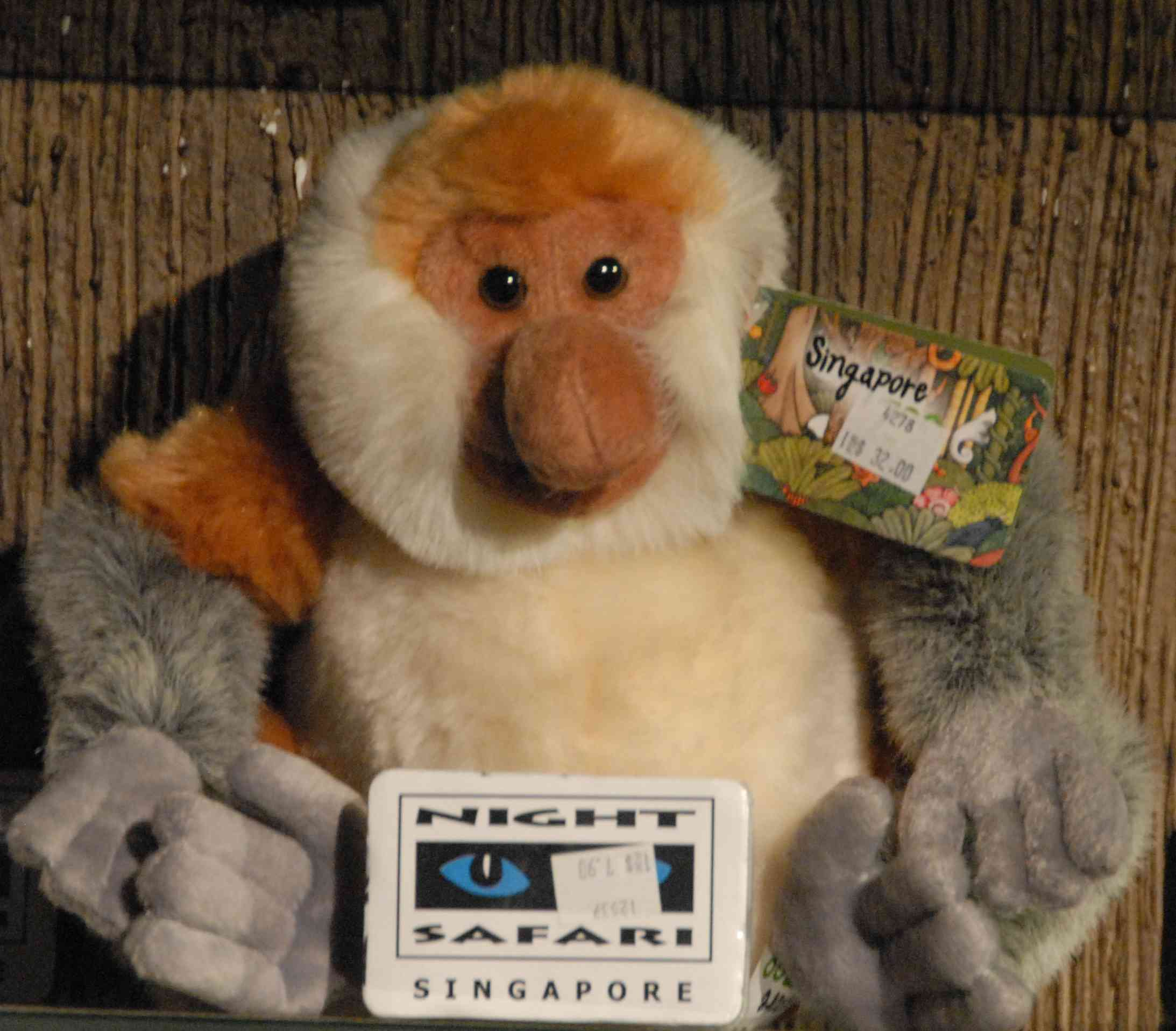 http://www.prise2tete.fr/upload/NickoGecko-nasique1.jpg