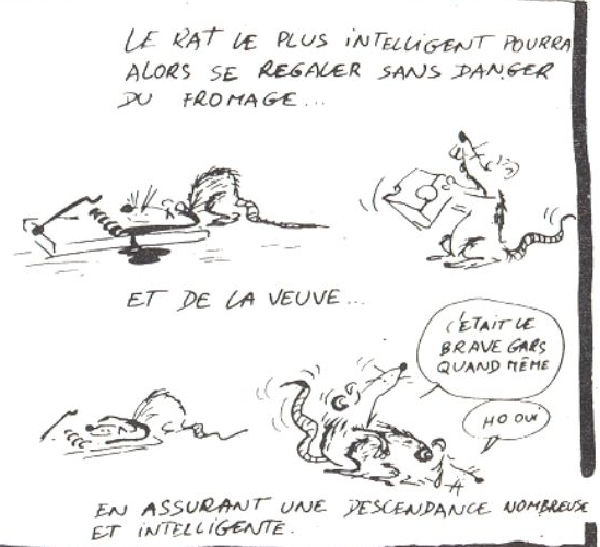 http://www.prise2tete.fr/upload/NickoGecko-rat12.jpg