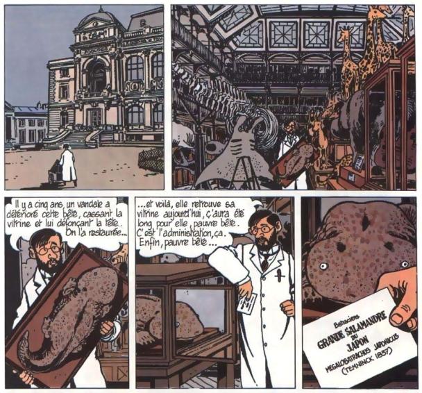 http://www.prise2tete.fr/upload/NickoGecko-tardisalamandre.jpg