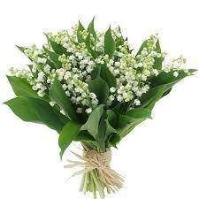 http://www.prise2tete.fr/upload/Papy04-muguet.jpg