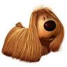 http://www.prise2tete.fr/upload/Papy04-pollux.jpg