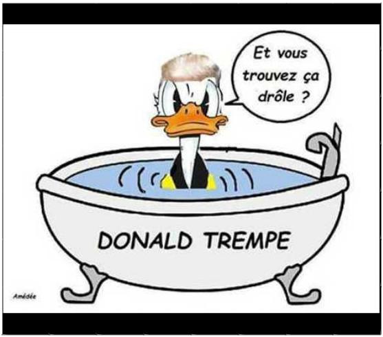 http://www.prise2tete.fr/upload/ash00-donaldtrempe.png