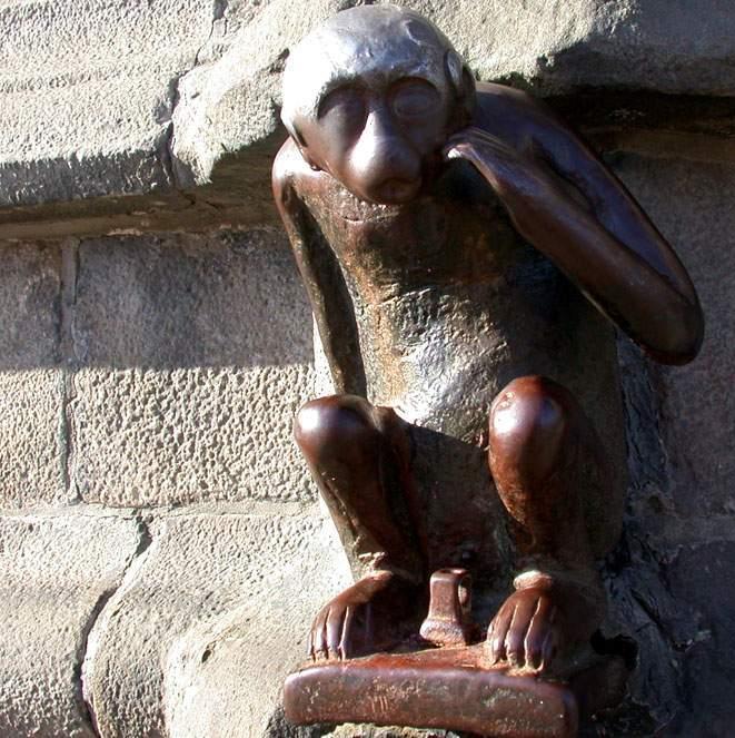 http://www.prise2tete.fr/upload/ash00-singe.jpg