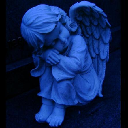 http://www.prise2tete.fr/upload/elpafio-Angelot.jpg