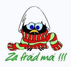 http://www.prise2tete.fr/upload/elpafio-Rep-froid.jpg