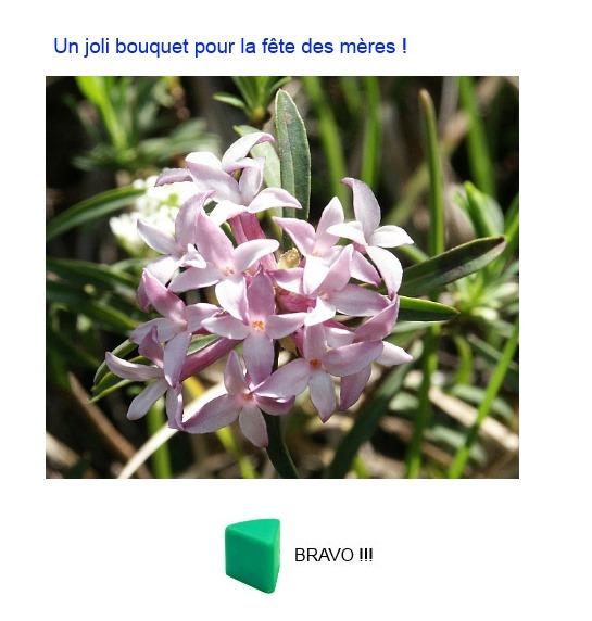 http://www.prise2tete.fr/upload/fix33-daphne.jpg