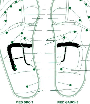 http://www.prise2tete.fr/upload/franck9525-medecine_pied.jpg