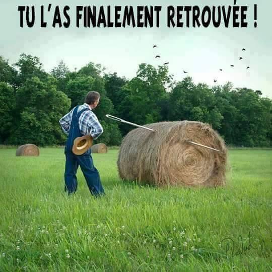 http://www.prise2tete.fr/upload/fvallee27-aiguille.jpg