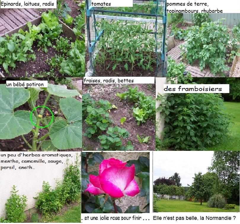http://www.prise2tete.fr/upload/fvallee27-medley.jpg