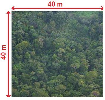 http://www.prise2tete.fr/upload/gilles355-02.re.jpg