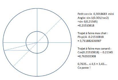 http://www.prise2tete.fr/upload/gwen27-chatcanard2.JPG