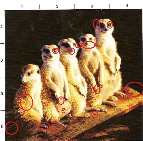 http://www.prise2tete.fr/upload/gwen27-combiendedifferences1.jpg