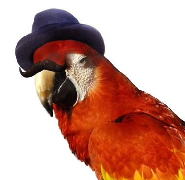 http://www.prise2tete.fr/upload/langelotdulac-hercule.png