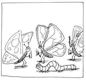 http://www.prise2tete.fr/upload/maitou22-chenille2.jpg