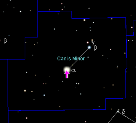 http://www.prise2tete.fr/upload/maitou22-procyon.png