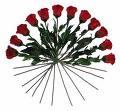 http://www.prise2tete.fr/upload/maitou22-roses.jpeg