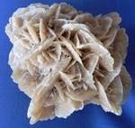 http://www.prise2tete.fr/upload/maitou22-rosesables3.jpg