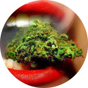 http://www.prise2tete.fr/upload/nobodydy-N56-plus-dur-c-est-de-la-Beuh.jpg