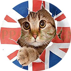 http://www.prise2tete.fr/upload/nobodydy-N56-un-Chat-en-anglais.jpg