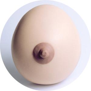 http://www.prise2tete.fr/upload/nobodydy-N56-un-joli-Sein.jpg