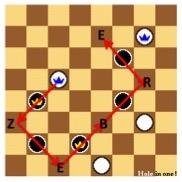 http://www.prise2tete.fr/upload/nobodydy-zebre2.jpg