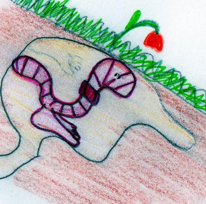 http://www.prise2tete.fr/upload/piode-img004.jpg