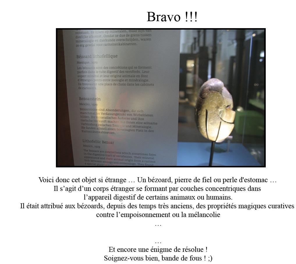 http://www.prise2tete.fr/upload/sosoy-bezoard.jpg