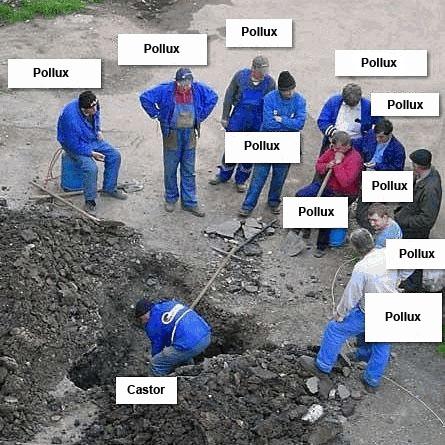 http://www.prise2tete.fr/upload/sosoy-hameltravaux.jpg