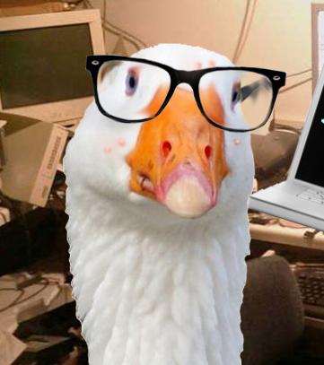 http://www.prise2tete.fr/upload/sosoy-oiegeek.jpg