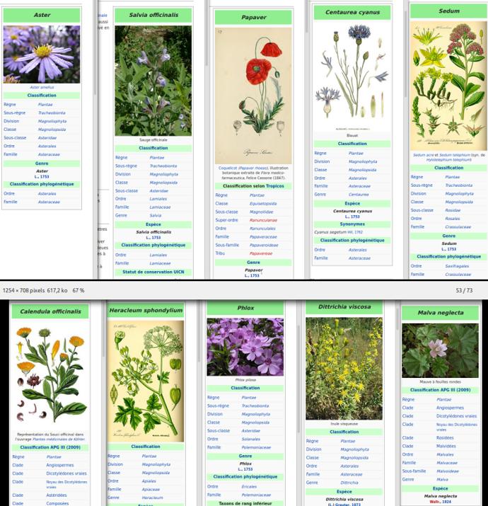 https://www.prise2tete.fr/upload/tesla-panred.png